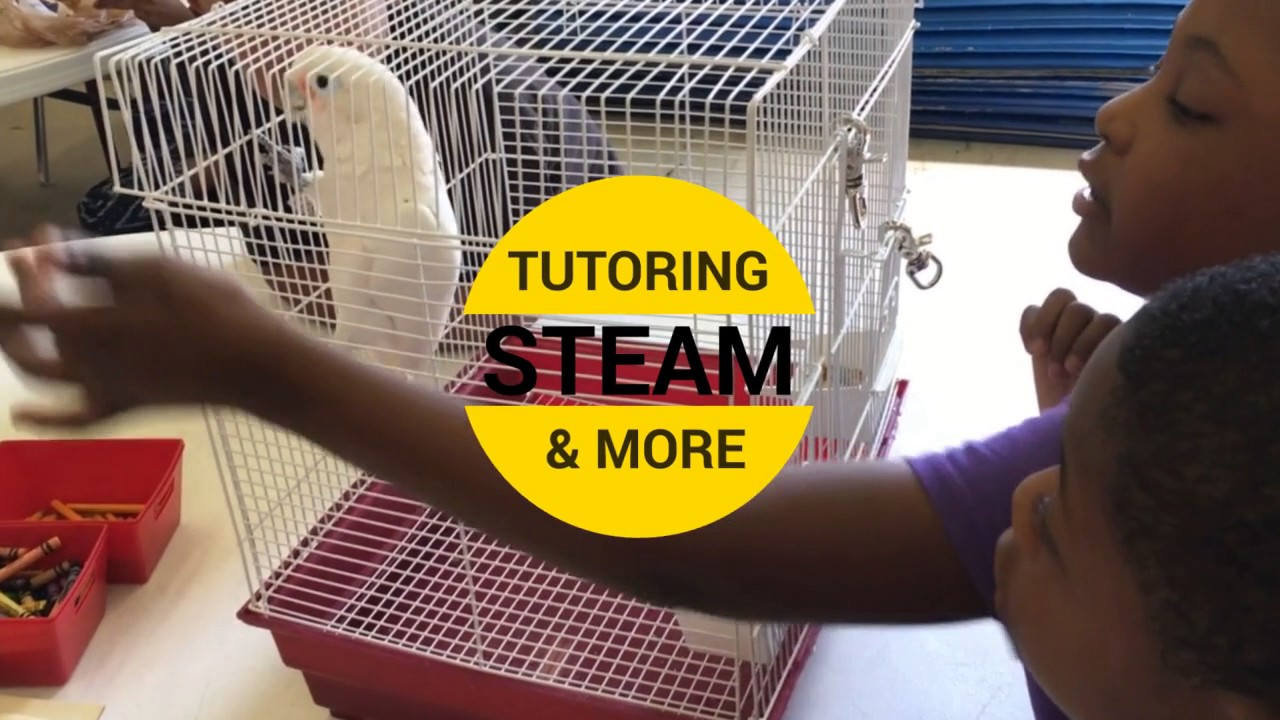 Quality Afterschool Programs and Summer Camps