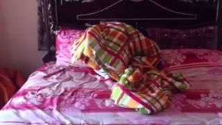 Lasya gugu hide n seek in the quilt Thumbnail