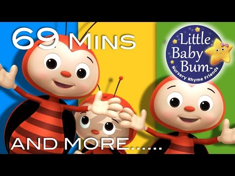 Ladybug Ladybug | Plus Lots More Nursery Rhymes | 69 Minutes Compilation from LittleBabyBum!