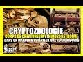CRYPTOZOOLOGIE / CORPS DE CRÉATURES MYTHIQUES RETROUVÉ AUX ROYAUME-UNIS MDDTV