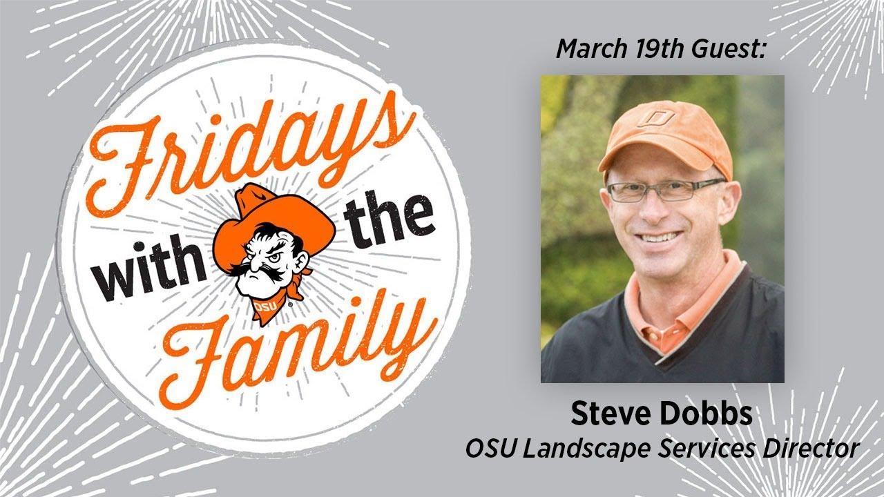 Image for Fridays with the Family - Steve Dobbs webinar