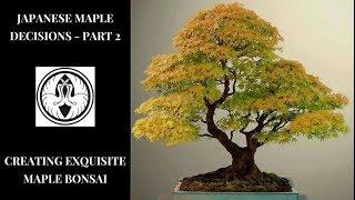 Japanese Maple Decisions Part 2 - Creating Exquisite Maples