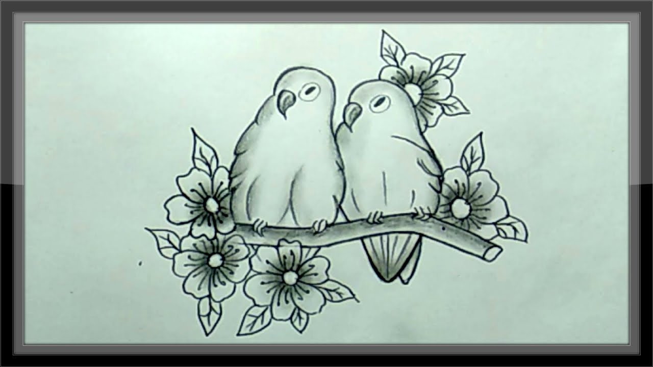 Pencil drawing a beautiful love pair birds picture easy
