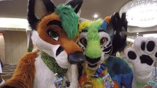 Biggest Little Fur Con 2017 - Random Clips
