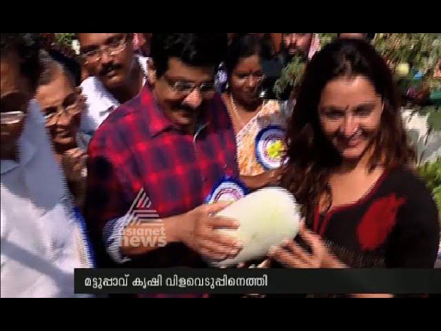 Manju Warrier attend Kudumba Sree's organic farm harvesting fest