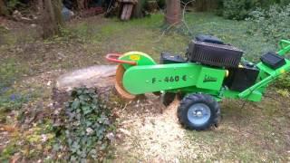 DAKO Usługi Ogrodnicze - frezowanie, usuwanie pni, korzeni, wycinka i pielegnacja drzew Syców