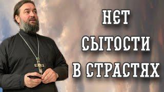 Любая страсть может заполнить всего человека. Протоиерей Андрей Ткачев.
