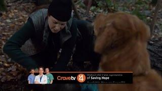 Saving Hope S03E13 Narrow Margin