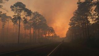 Wildfire rages along Florida-Georgia line