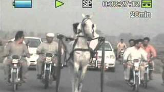gujranwala ki race part 6