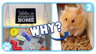 Holiday Decorating & The Truth About Hamsters || Vlogstice Day 2