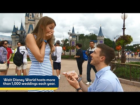 Top 5 Walt Disney World Special Moments