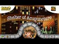 [~Dragon of Earth~] #9 Shelter of Acupuncture - Diggy's Adventure