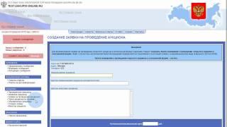 zakupki-online.ru - организация аукциона