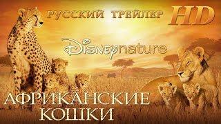 Африканские кошки (2011)-ДИСНЕЙ-Дублированный Трейлер HD