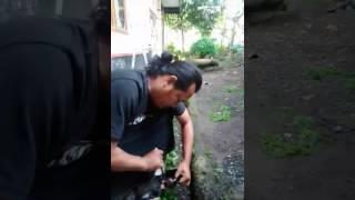 Video Ilmu Pancasona download MP3, 3GP, MP4, WEBM, AVI, FLV Juni 2018