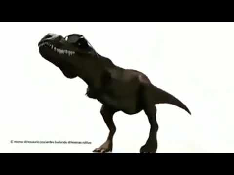 Dancing Dinosaur - Apple Bottom Jeans