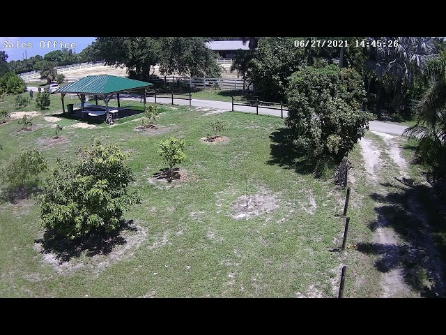 Theft at fruit farm.  Look at white car in upper left of screen.