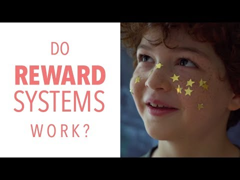What do Reward Systems Really Teach? Do they Actually Work?