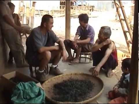 PUER TEA video 5 - Authentic Tea