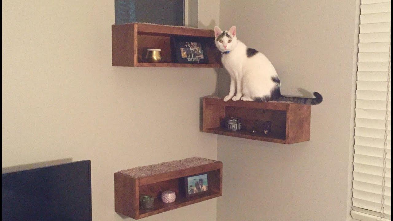 Floating Cat Shelf Boxes