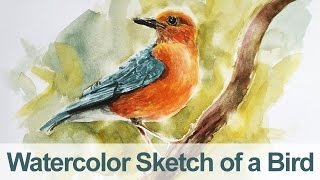 Watercolor Painting - Bird Demo
