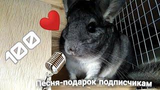 ПЕСНЯ-ПОДАРОК НА 100 ПОДПИСЧИКОВ! /Спасибо за 100!/Пародия на песню Niletto - Любимка
