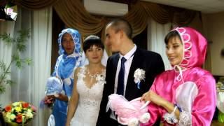 Свадьба, Видеооператор, Ведущая Киев, Киевская обл.