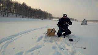 СНЕГ метет, ОКУНЬ ПРЕТ! Эта оснастка спасла рыбалку и принесла трофейных окуней! Зимняя рыбалка 2020