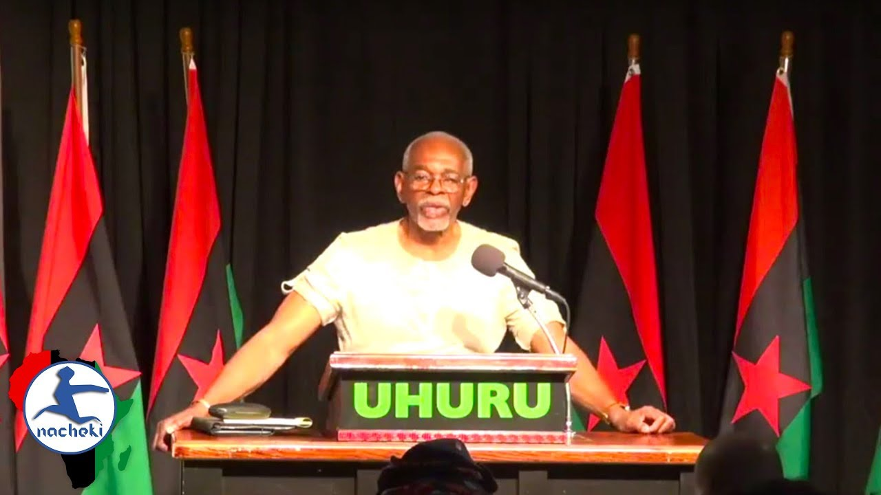 Every African Needs to Watch this Video If they Want True Uhuru