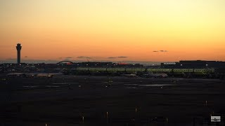 🔴 Airport Live Stream Tokyo Haneda  羽田空港