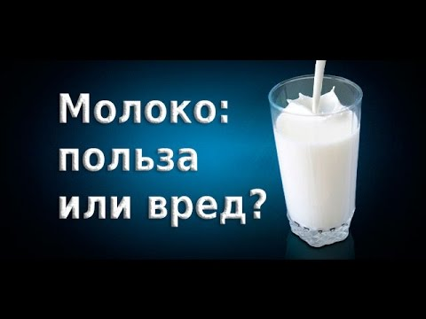 Диета на молокочае, диета на молоке и зеленом чае, отзывы