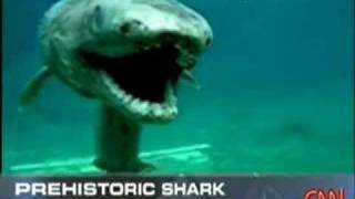 Prehistoric shark, BREAKING NEWS thumbnail