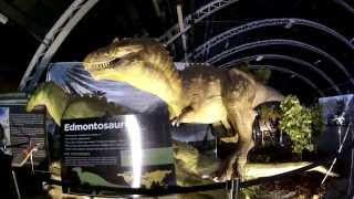 Jurassic Quest - Santa Rosa, CA