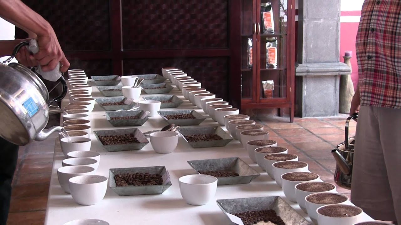 Coffee Cupping Water Pouring