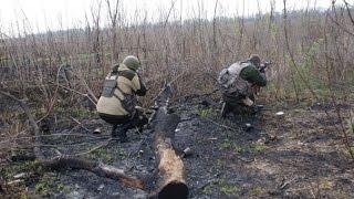 Почему на Украине не начинается партизанская война