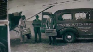 Tyson: Keeping it real since 1935. thumbnail