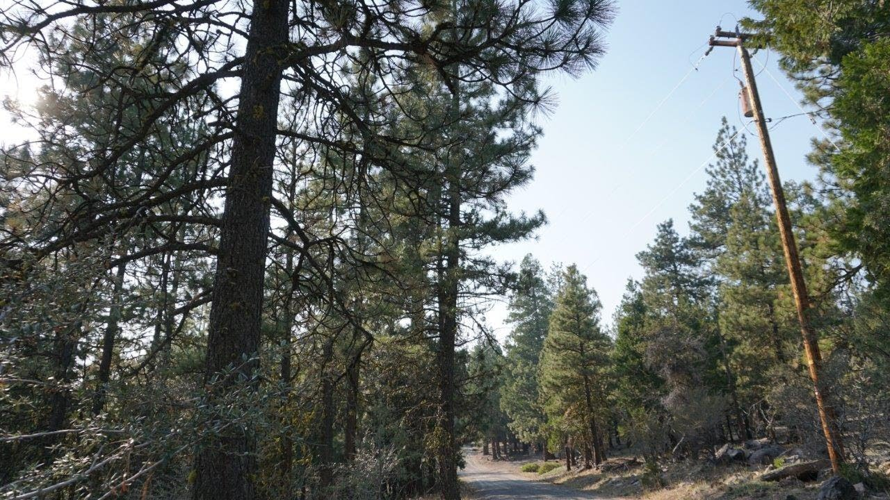 2.3 Acres with Power! Bonanza, OR