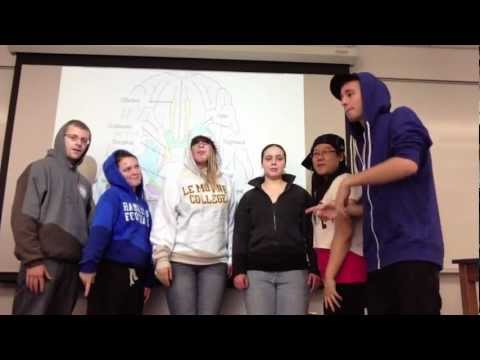 Cranial Nerves Song (My Humps)