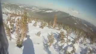 Powder Snowboarding German Shorthaired Pointer Rips Backcountry