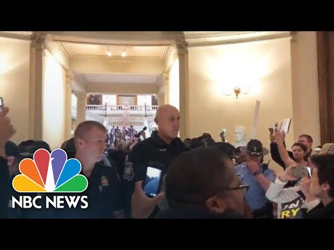 Protesters Arrested At Georgia State Capitol Calling For Every Vote To Be Counted | NBC News
