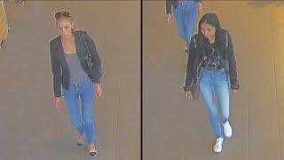 Brutale zakkenrollers slaan toe bij Albert Heijn in Leidschendam