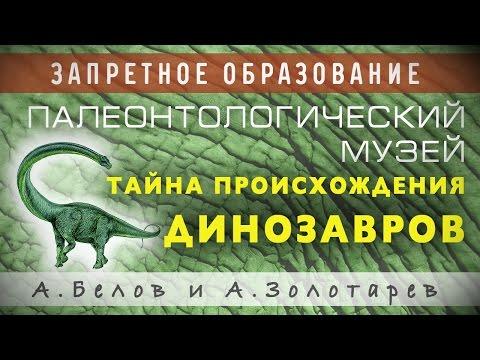 Палеонтологический музей. Александр Белов.