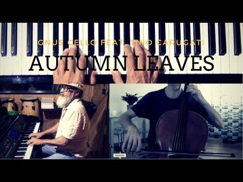 Autumn leaves - GnuS Cello feat. Tino Carugati (JAZZ COVER)
