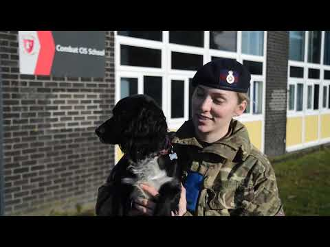 What happens at Trade Training? | Royal Armoured Corps | British Army