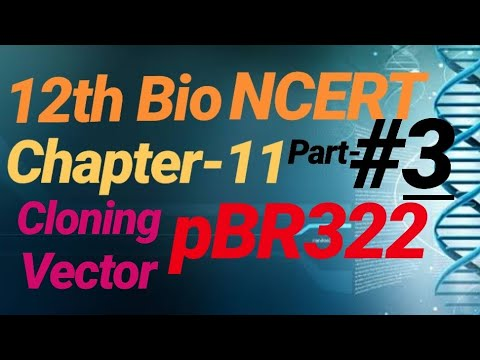 #68  12th NCERT Bio Line to line in hindi #CHAPTER_11#BIOTECHNOLOGY:PRINCIPLES AND PROCESSES thumbnail
