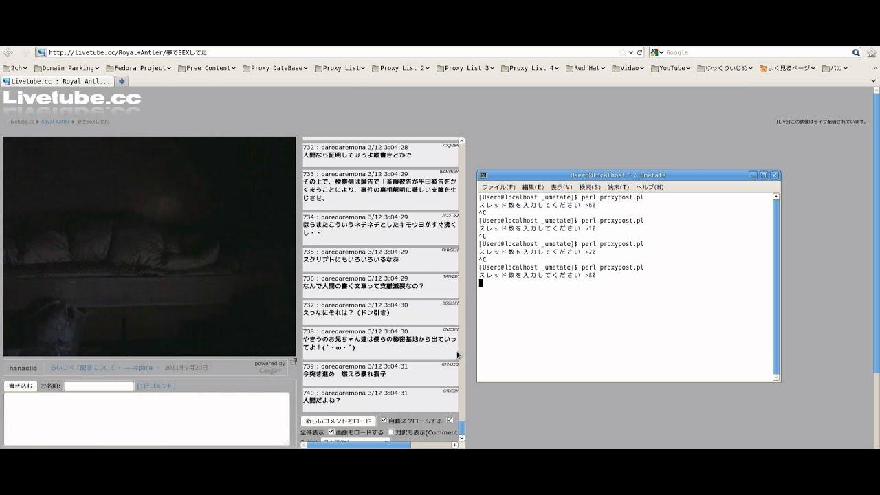 Perl でLiveTube.ccに大量にコメント・レスポンスを送信するテスト