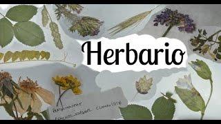 Como hacer herbario parte 2 - pegar, etiquetar y presentar