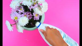 Mette la candeggina nei fiori: il trucchetto da provare subito