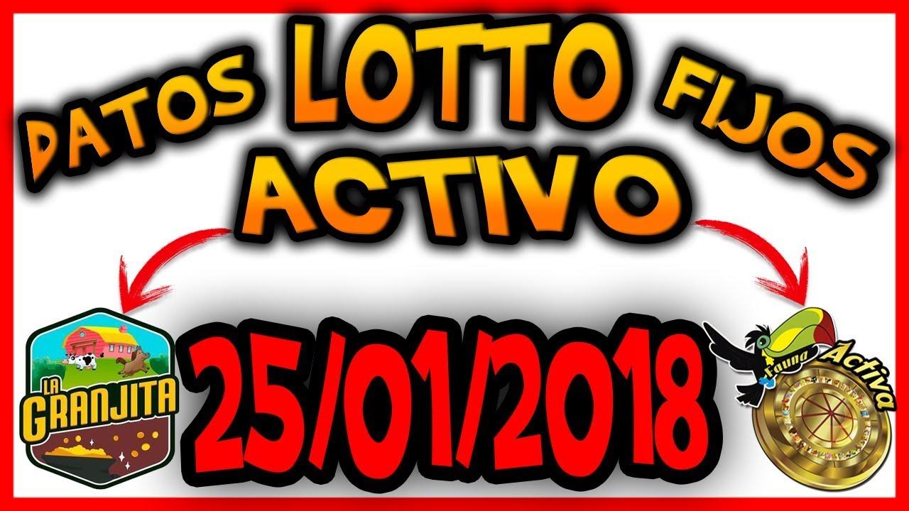 Los Lotto